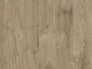 K361_Gold Harbor Oak_web.jpg